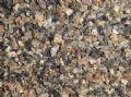 吉林松脂岩