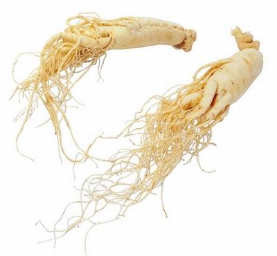 西洋参籽-提供优质花旗参种子价格 提供优质花旗参种子型号规格