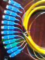电信级SC12芯光纤束状尾纤