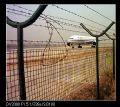 飞机场防护铁丝网