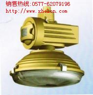 SBD1105-YQL120免�S�o�能防爆��