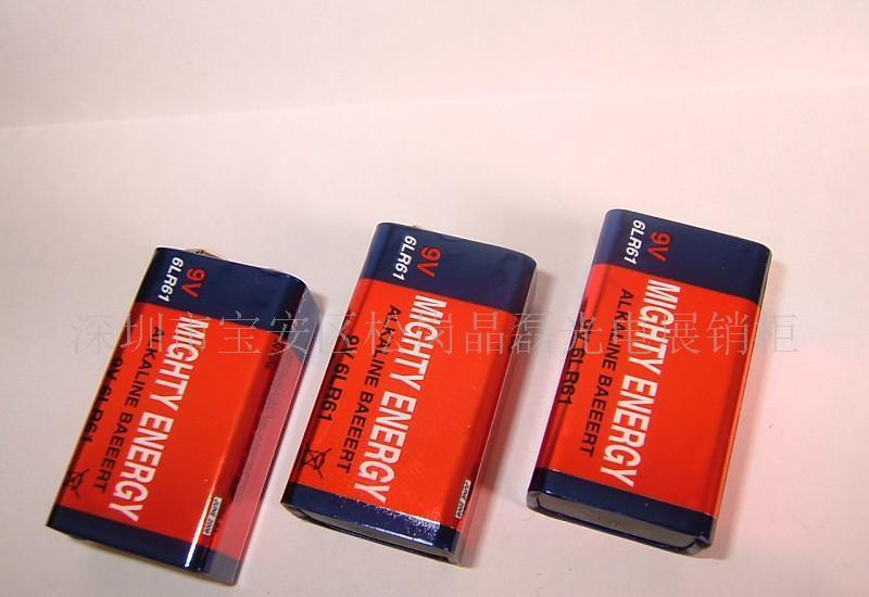 9v大容量锂电池型号规格
